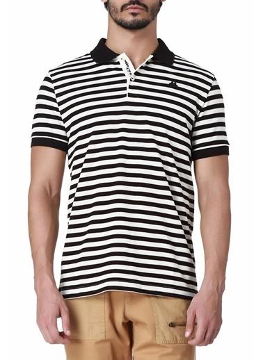 Kappa Ringel Pike T-Shirt  Renkli